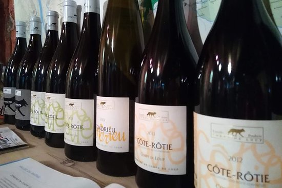 Vienne Cote Rotie Wine Half-Day Tour with Tasting from Lyon