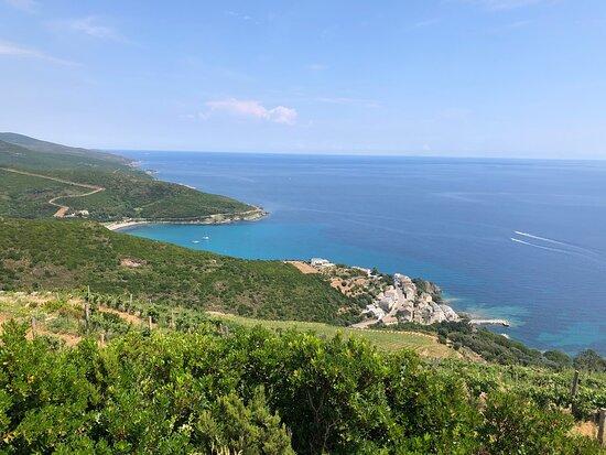 Domaine Terra di Catoni