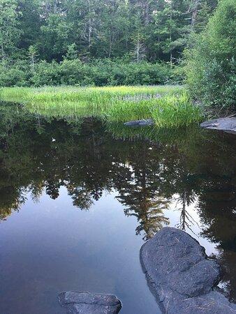 Piercefield, NY: Big river falls. Southern bay of tupper lake. Local fishing spot as well