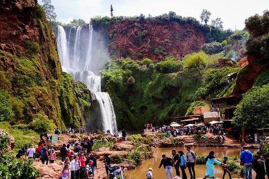 Marrakech: excursion d'une journée aux...