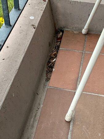 """Balkon zum """"Superior-Zimmer"""" - total verschmutzt und Zigarettenkippen vom Vorgänger"""