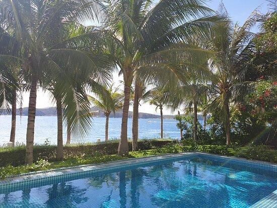 View hồ bơi phòng master tầng dưới