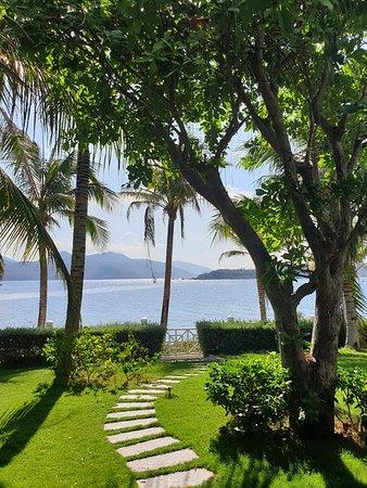 Đường đi nhỏ mảnh vườn bên hông villa xanh mướt