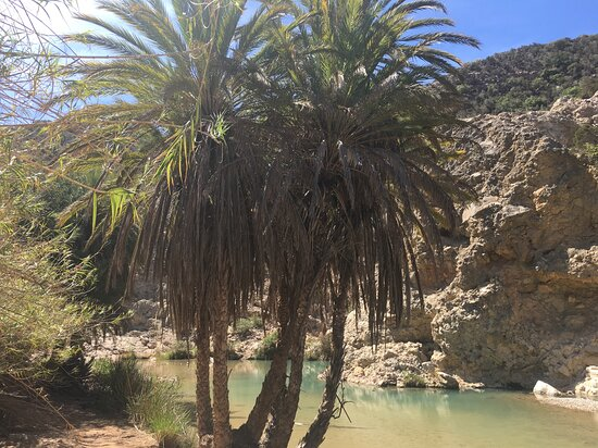 Agadir Cooking Class Including Paradise Valley and Sand Dunes Desert Trip: Our own private paradise valley.