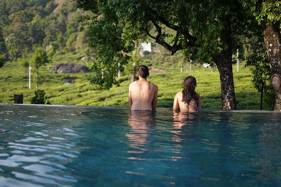 our pool overlooks a beautiful tea garden