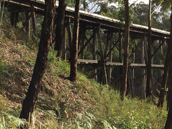 Wairewa Trestle Rail Bridge