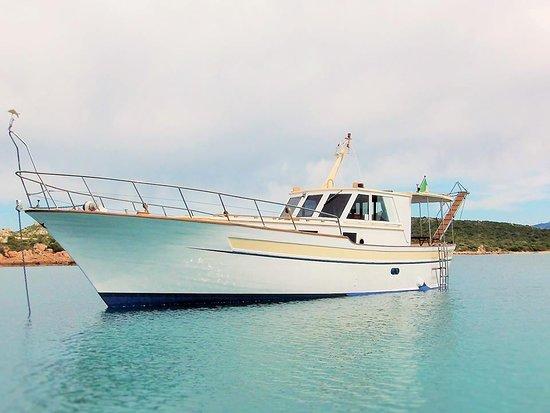 Motobarca Antares