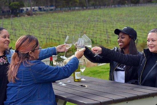 Cape Winelands從開普敦到斯泰倫博斯和弗朗斯胡克的一日遊