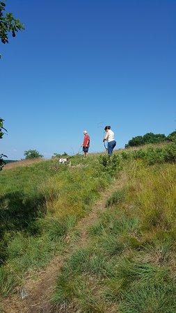 Barrett Township, بنسيلفانيا: trail hike
