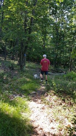 Barrett Township, بنسيلفانيا: on the trail