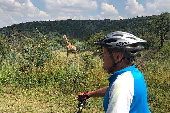 e-Biking.co.za