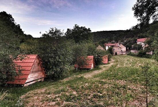 Hrvace, Horvátország: Izletiste Podastrana