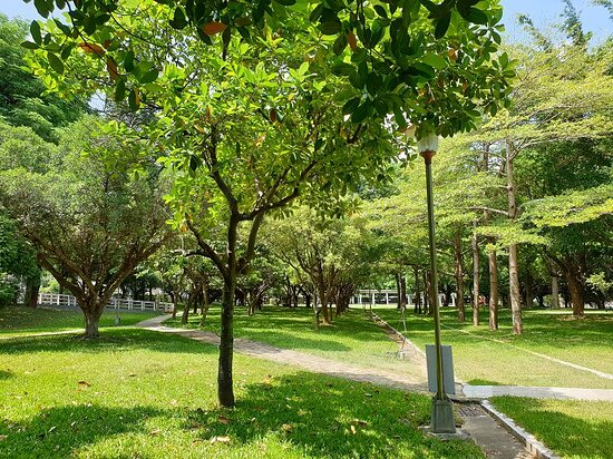 Shimao Park