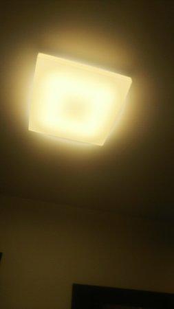 客室の天井にはシーリングライトが点いていて明るい。