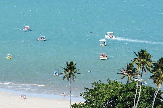 Día De Playa En Maragogi Con Catamarã...