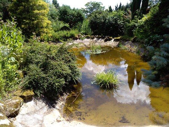 Borotin Arboretum