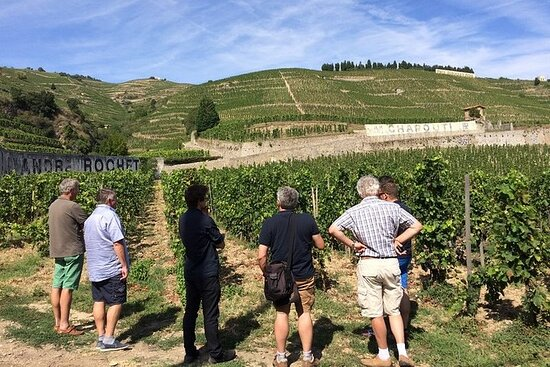 Cotes du Rhone Wine Tour - Private Day Tour - From Lyon