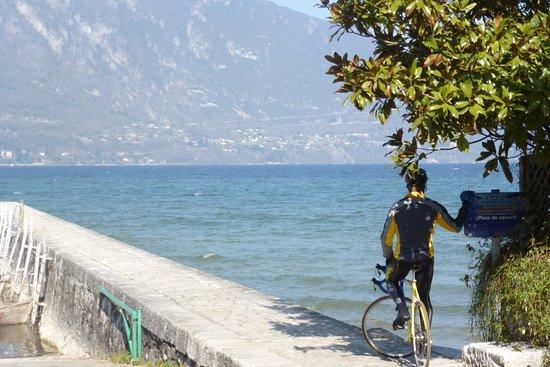 GenevaCycling.com