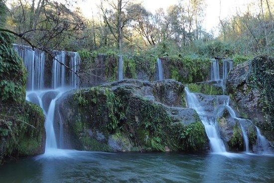 Volcanic Trekking: Tagesausflug zu Vulkan, Wald und Wasserfall...