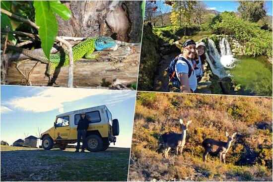 Aventuras Forte(s) - Turismo de Natureza