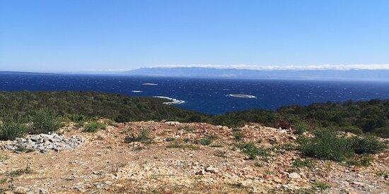 Molat Island照片