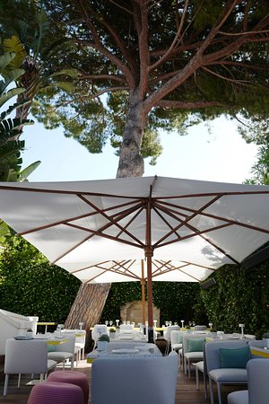 Courtyard dining area, shaded by the pines, is the perfect dining area to be enjoyed at any time of day!