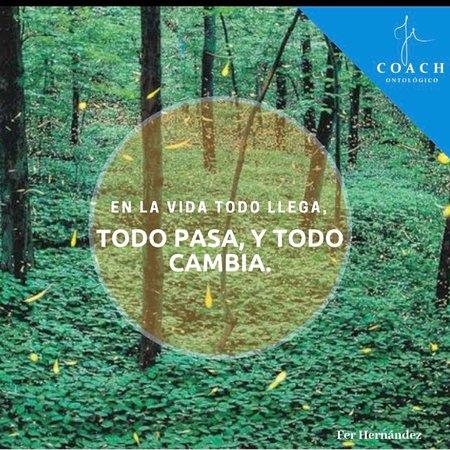 Nanacamilpa, Mexico: Tour Luciérnagas, evento de temporada en los meses de junio, julio y agosto de cada año. Cel 246 156 7570