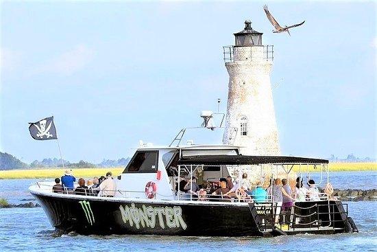 Savannah Tybee Island Dolphin Cruise Tour mit Zwischenstopp am Tybee...