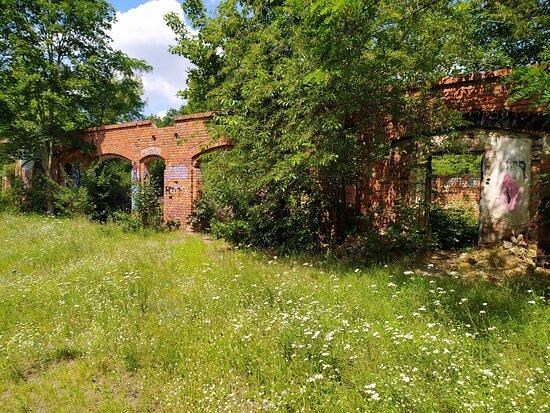 Ruiny Ogrodnictwa Mielochów