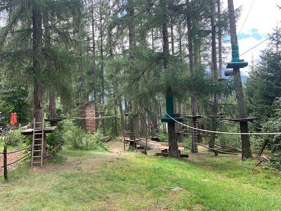 Waldseilgarten Laas Alitzer Waldele