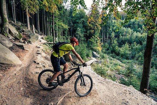eMtn Bike Experience, sentiers à voie unique du parc national (TA)
