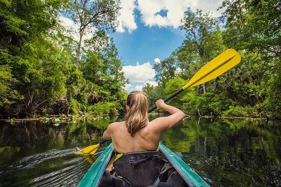 Kayaks et raies pastenagues: repérez les raies dans les ruisseaux...