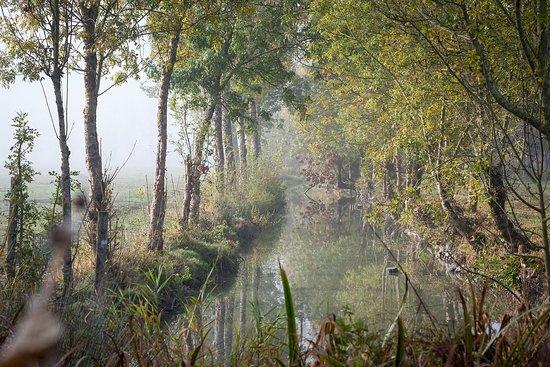 Reserve Biologique Departementale de Nalliers