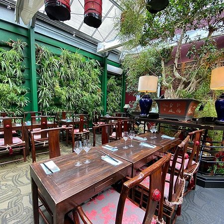MAO : 1er etage : Jardin d'intérieur
