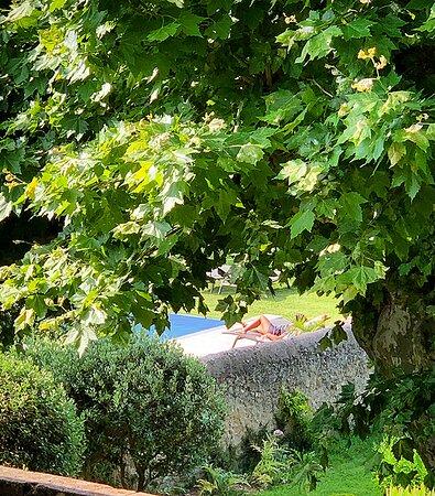 intimité, émergée dans la nature de nos jardins