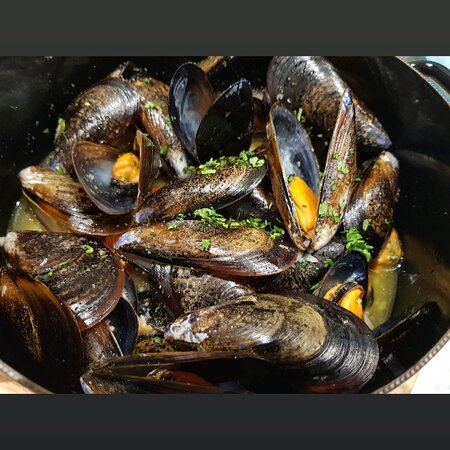 Mussels Seafood  Fish