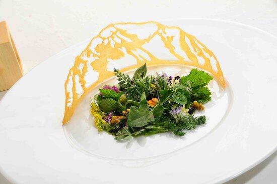 insalata di erbe di montagna