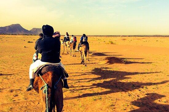 Marrakech Excursions Services