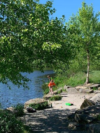 Buckeye Woods Park
