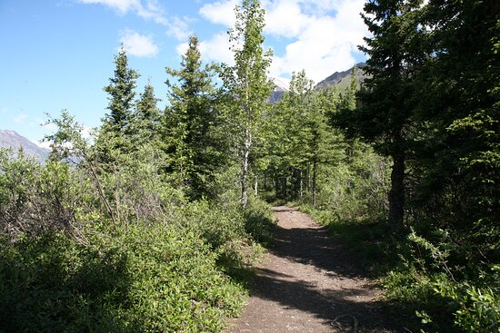Wooded portions of the hike (be noisy to keep from spooking bears)