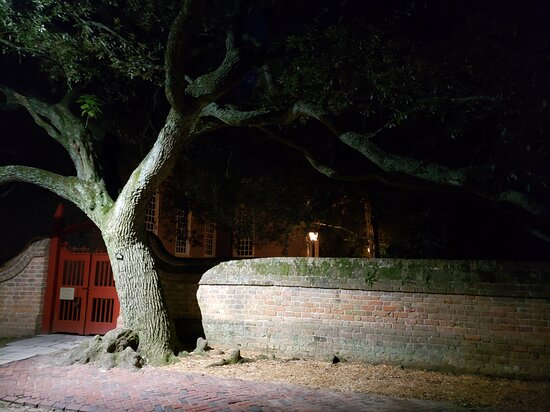 The Original Ghosts of Williamsburg Tour: Ghost tree