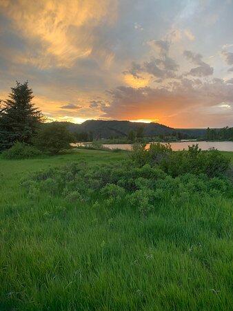Swan Valley Photo
