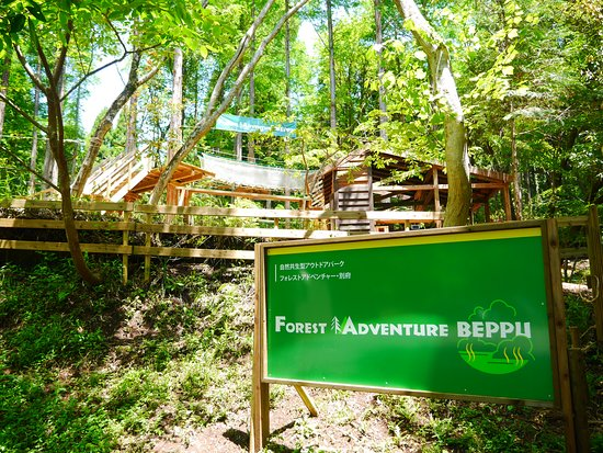 Forest Adventure Beppu