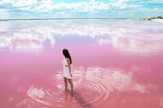 "Tour al Lago Rosa ""Las Coloradas..."