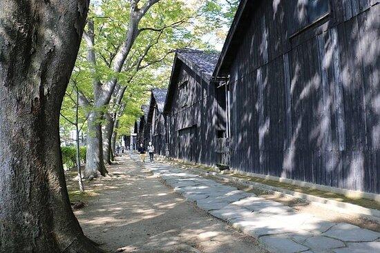 Excursion privée d'une demi-journée à Sakata et Tsuruoka avec un...