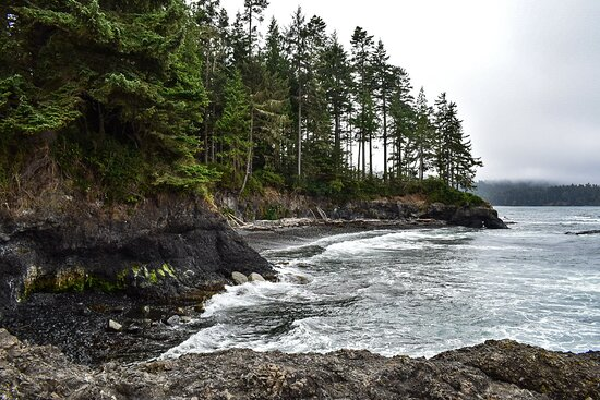 best places to tent camp! Elwha Dam