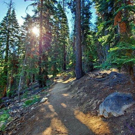 Huntington Lake, كاليفورنيا: Easy 1 mile hike