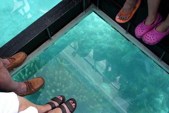 Bermuda Glass Bottom Boat Cruise