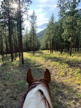 Adventure Missoula Horseback Riding