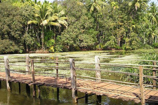 Highlights of South Goa with Spice Plantation Tour (Guided Fullday...
